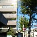 写真: 元フジテレビアナウンサー菊間千乃さんが落下した場所その1