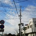 1月14日に埼玉県幸手市などへ行った記録その5