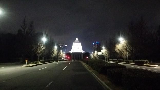 スカイツリーや江東区の夜景ほか12月28日に都心方面へ出かけた画像その22
