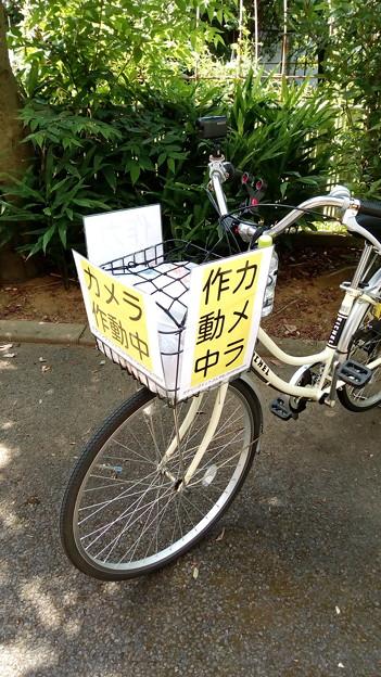 車載動画を撮っている自転車はこんな感じ