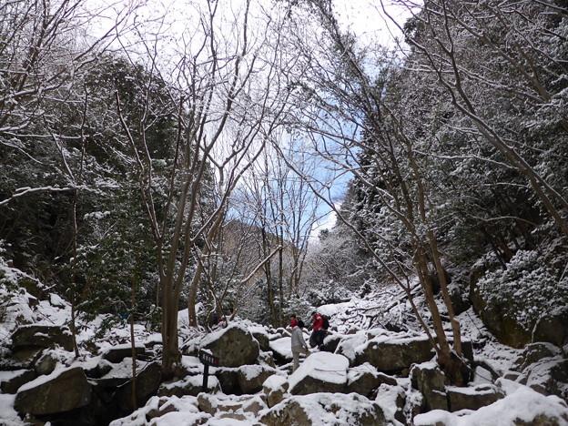 オウネンの滝上流