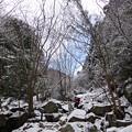 Photos: オウネンの滝上流