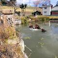 写真: 福崎の河童