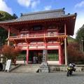 写真: 高山寺