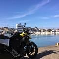 写真: 雲城水の裏手は旧小浜漁港