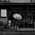 写真: 「Polka dot・ rainy day」