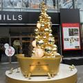2014*表参道ヒルズのクリスマス★1