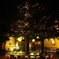長楽館のクリスマスツリー