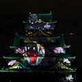 大阪城3Dマッピング 阪神タイガースバージョン(2)