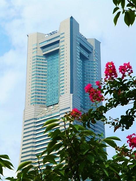 横浜ランドマークタワーと百日紅