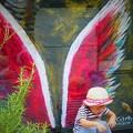 写真: 天使の羽