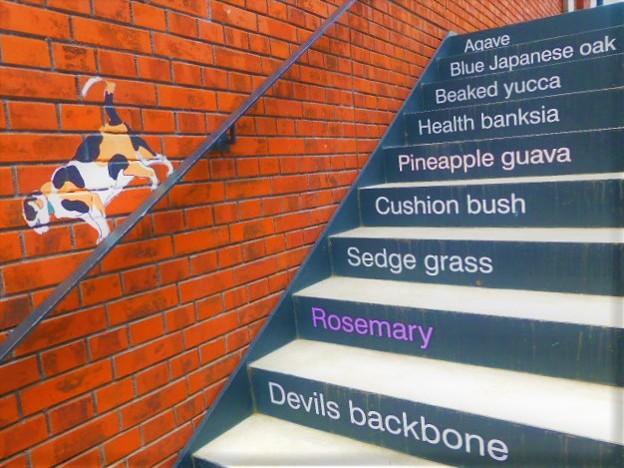 階段の手摺り