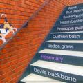 Photos: 階段の手摺り