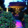かまくら長谷の灯かり 極楽寺