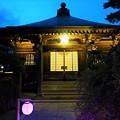 Photos: 極楽寺 本堂