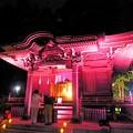 御霊神社 本堂ライトアップ