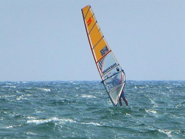 写真: 風と波を楽しむウインドサーフィン