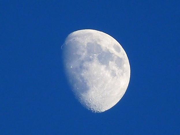 澄んだ空に浮かぶ月