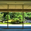 Photos: エントランスホールから見た庭園