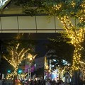 Photos: 神戸ハーバーランドのイルミネーション