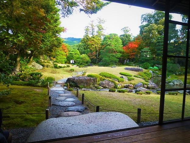 母屋から眺める開放的な芝生の丘