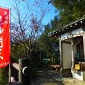 Photos: 旗振毘沙門堂