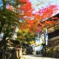 犬山城へと続く参道