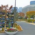 写真: 大阪城公園