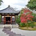 写真: 境内の御堂と紅葉