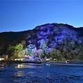 写真: 嵐山花灯路