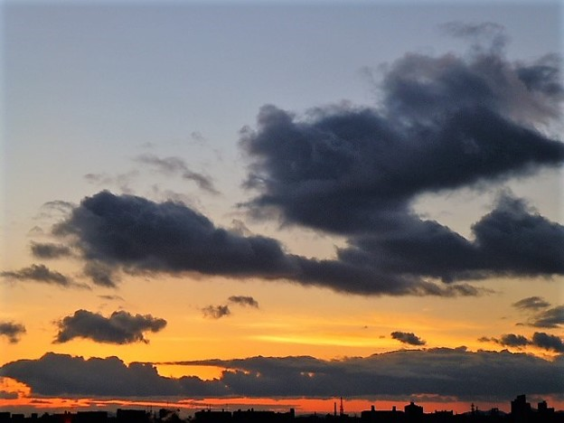 写真: 冬の夕暮れ