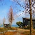 写真: 大津湖岸