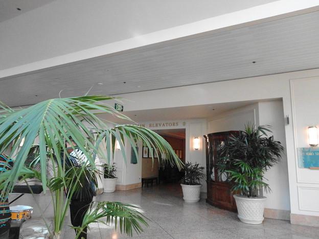 Hospital_Lobby-Dec23-2014-1
