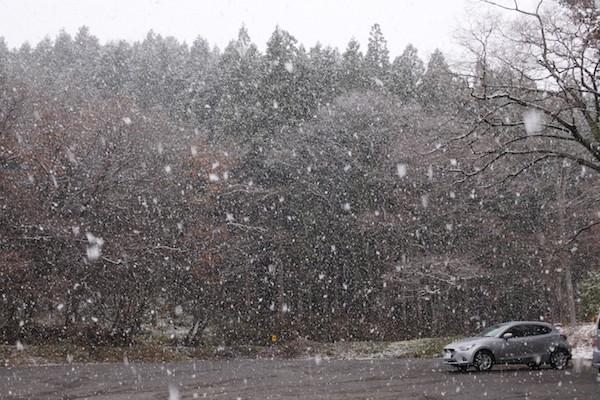激しく降る雪