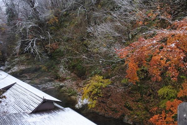 赤と黄色の紅葉と、雪景色を同時に楽しめた