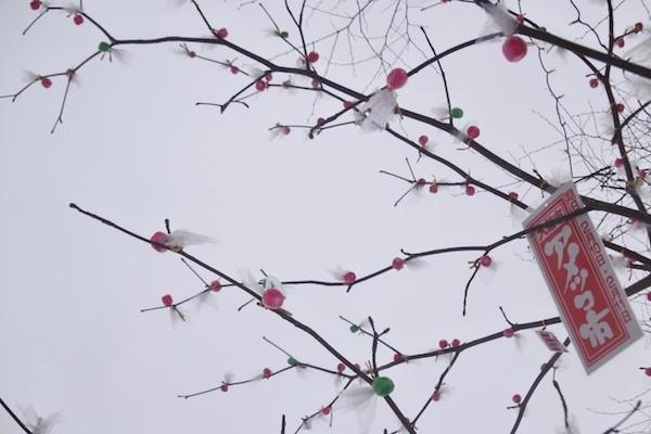 木の枝に飴を括りつけるのが2月に催される大館のお祭り「アメッコ市」