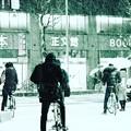 写真: 名古屋市内の雪