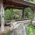 写真: 29 5 長野 箱山温泉 2