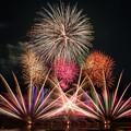 写真: いとしま市民祭り「百花繚乱」