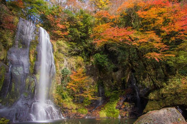 遊水自然の森カッパ滝♪