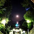 宮地嶽神社の月光の道
