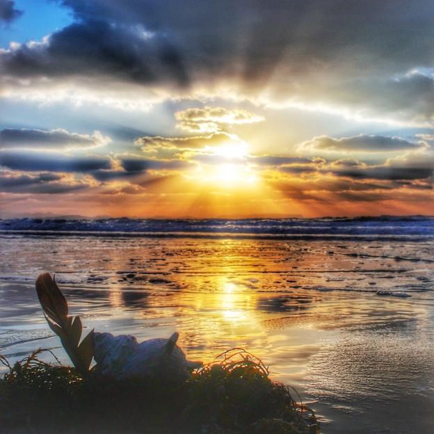 写真: 寒くても海が好き♪