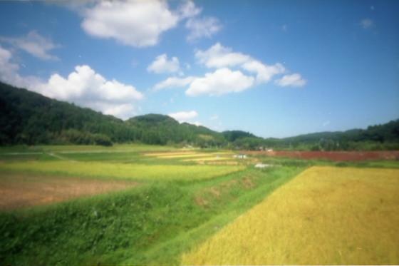 写真: 小湊鉄道 ピンホール 02