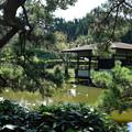 Photos: 小室山公園