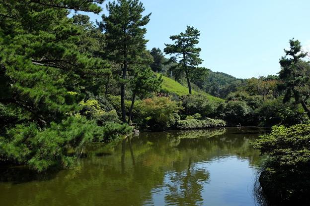 小室山公園の池と緑