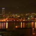 神戸の夜景(1)