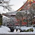 写真: 雪あけの浅草寺