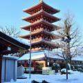 写真: 雪あけの五重塔