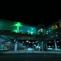 写真: 日立駅 ひたちのヒカリ
