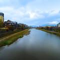 写真: 京都鴨川